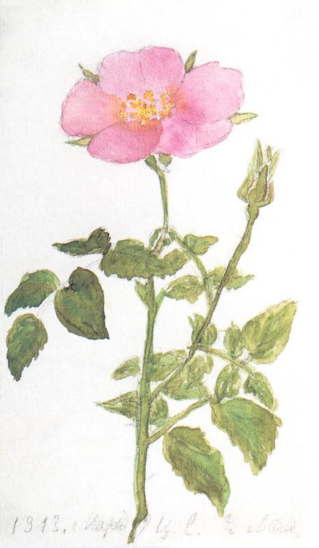 1913 artwork